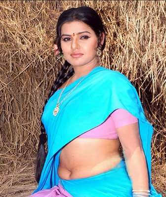 Madhu Sharma in Saree 9